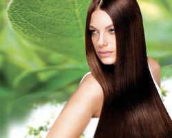 organic hair brown